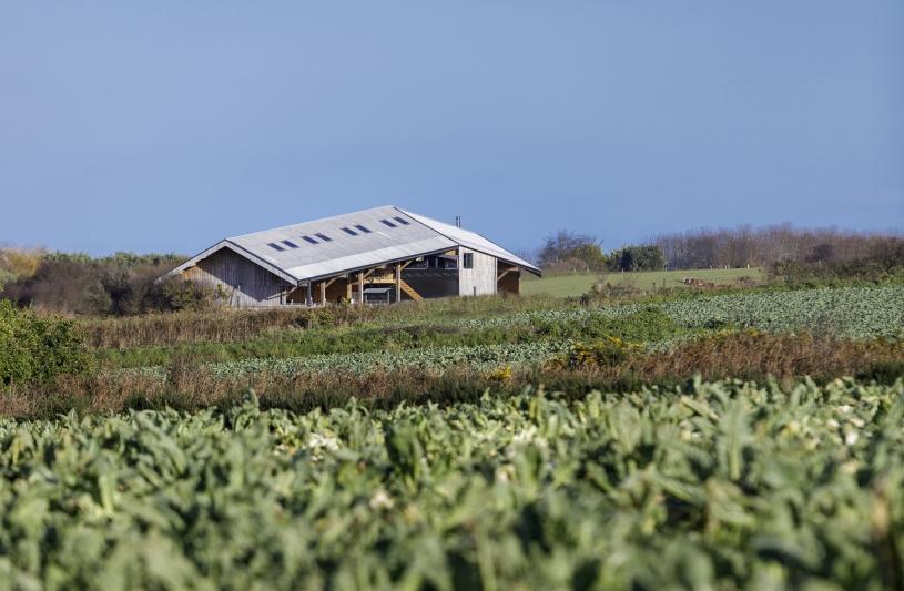 Ferme biologique à PLOUGRESCANT, vue extérieure, photographie Frédéric BARON