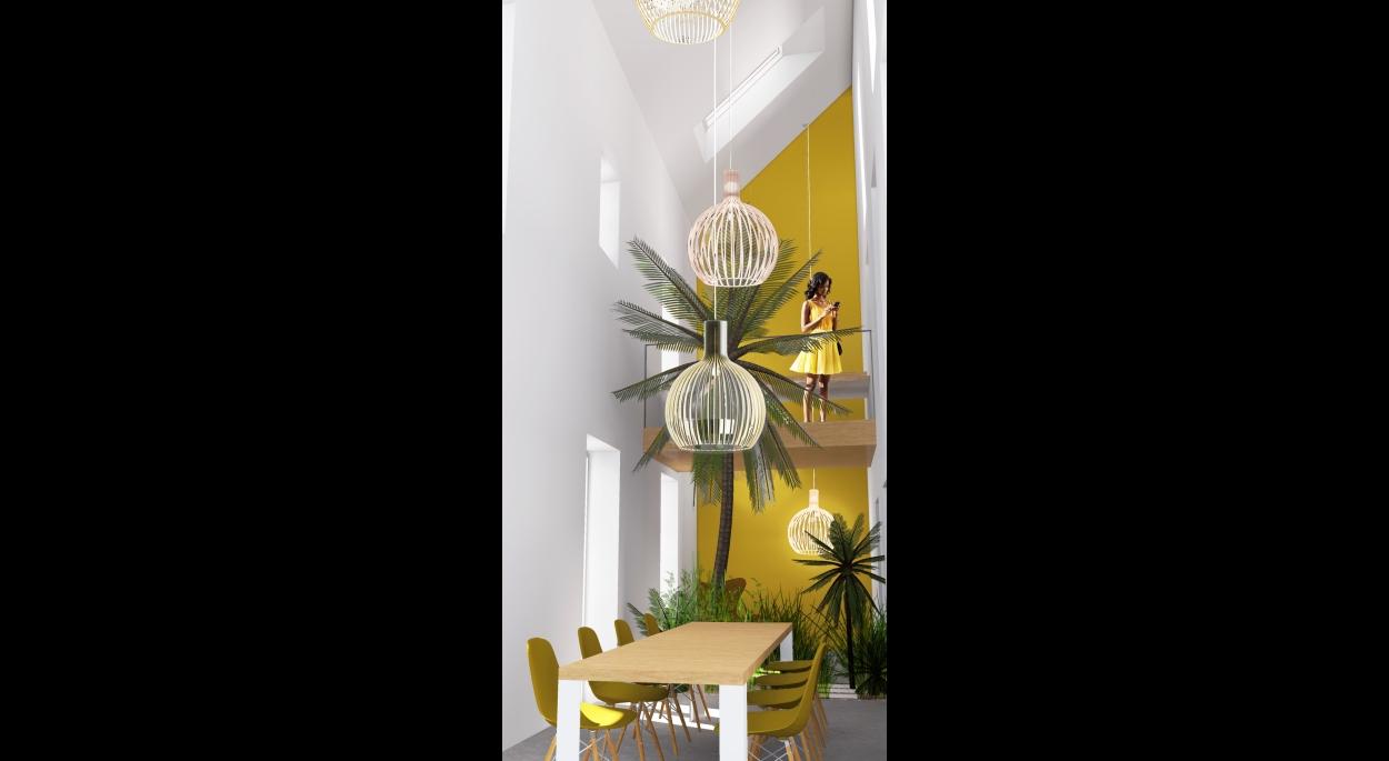 Rénovation, agencement intérieur maison pierre Séjour lumineux, espace planté et passerelle
