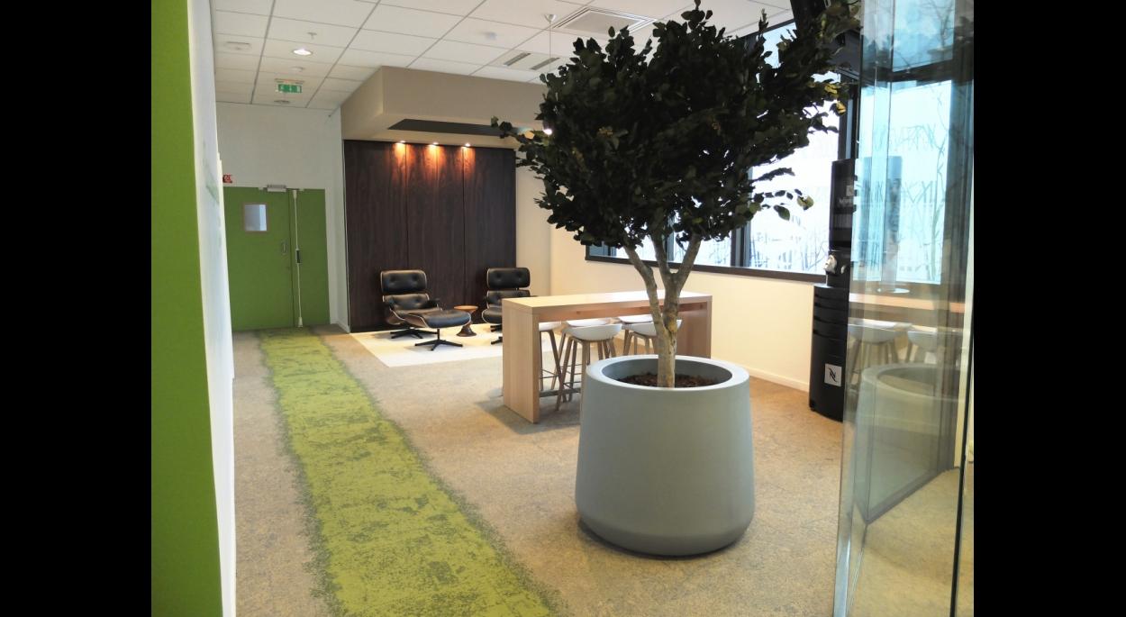 IBM Studio par SLA Architecture