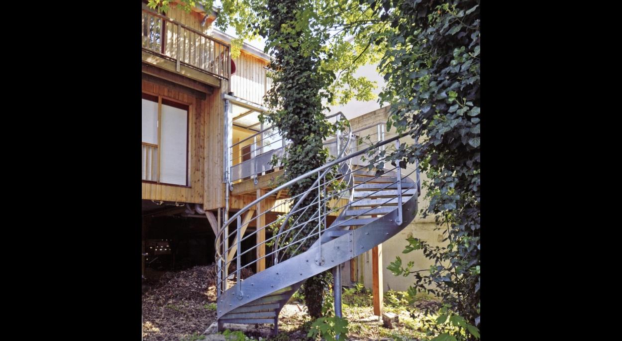 L'escalier autour de l'arbre