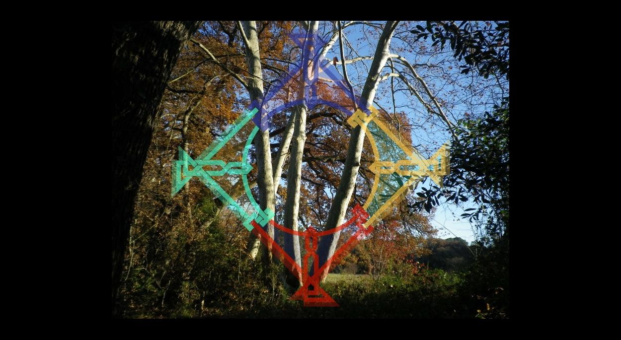 Photo de nature et entrelacs coloré pour dynamiser un espace de création