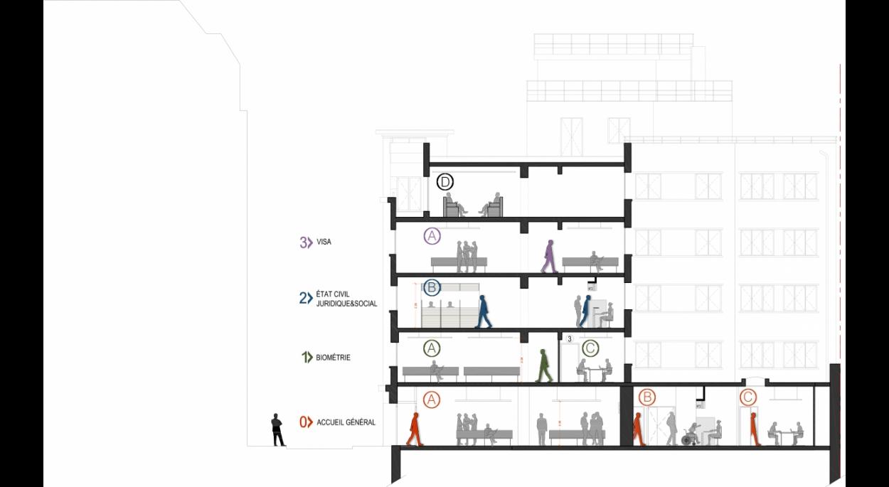 Coupe générale - phase Esquisse - par SLA Architecture