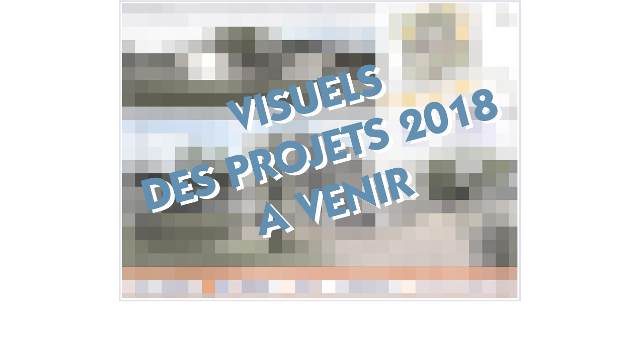 PROJETS 2018 EN COURS - VISUELS A VENIR.