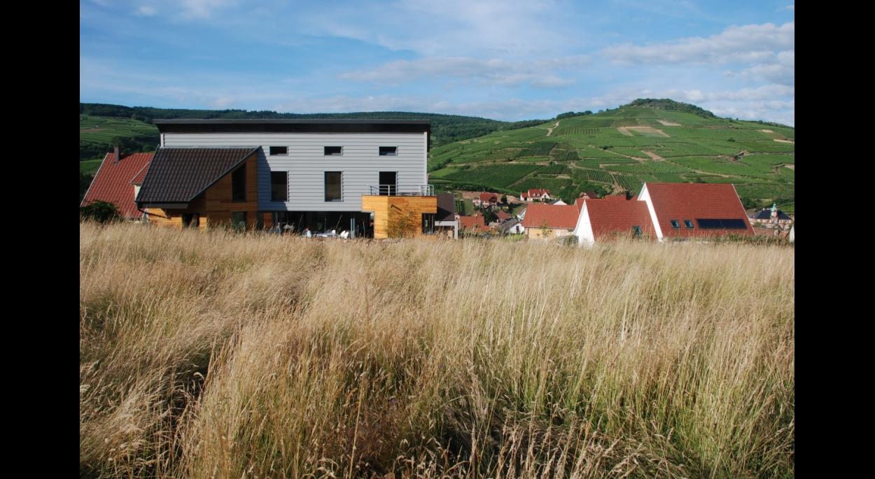 Maison neuve à Soultzmatt/vue arrière
