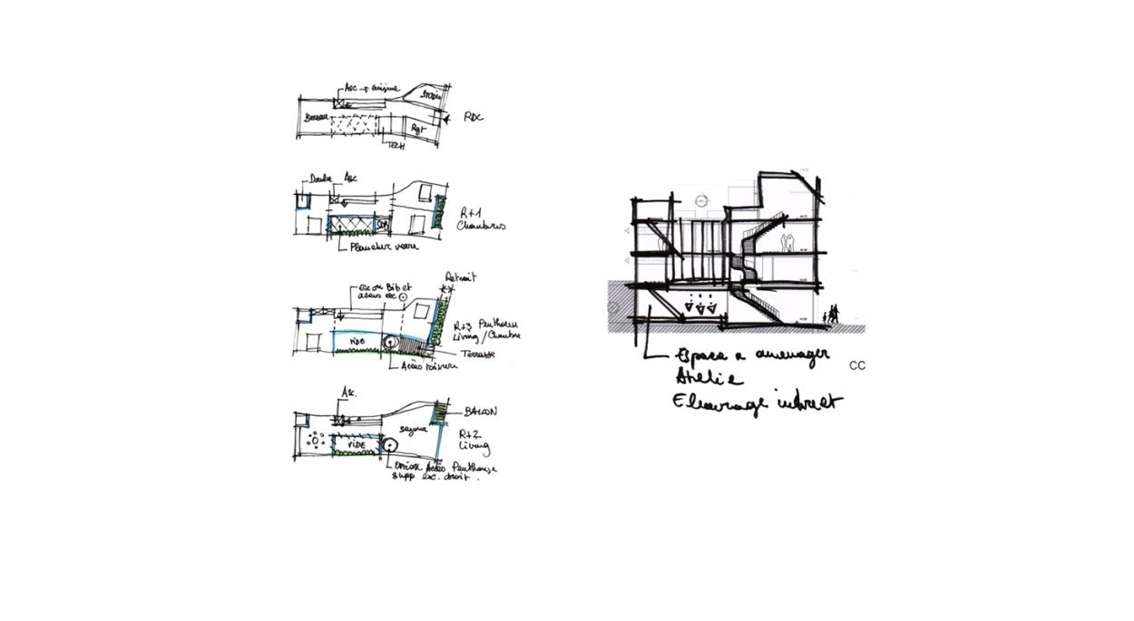 Construction d'une maison de ville - Phase esquisse - Plans