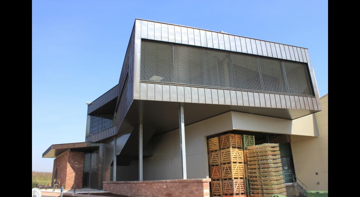 Cave du ROI DAGOBERT - Création d'un point d'accueil-vente, de salles groupes et de bureaux en extension du site existant - TRAENHEIM (67)