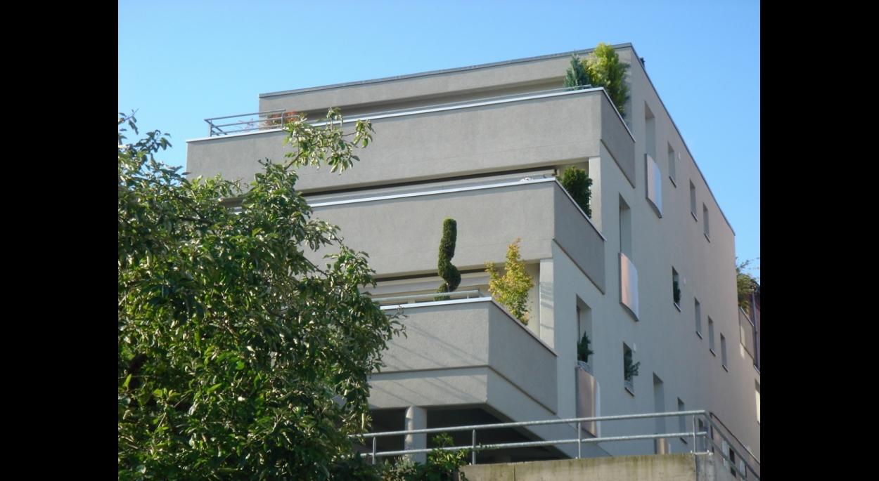 immeuble collectif mixte commerce / habitat