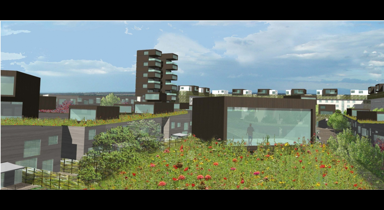 EUROPAN - CITE CELLIER - 235 logements - MULHOUSE (68)