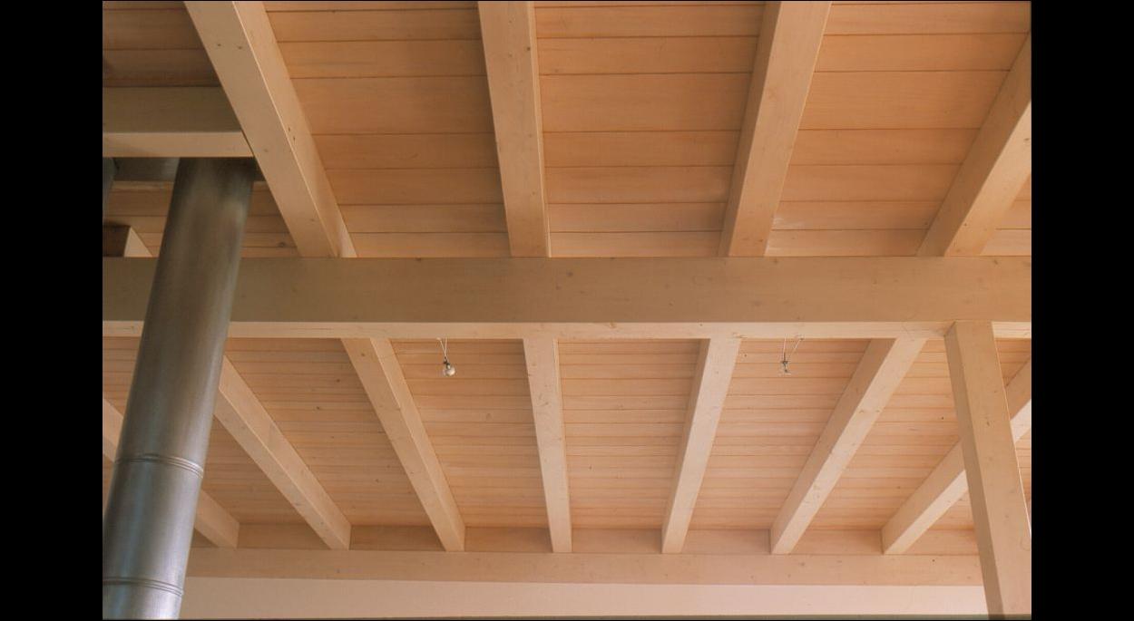 ossature bois poutres apparentes poteaux poutres maison passive alsace haut-rhin