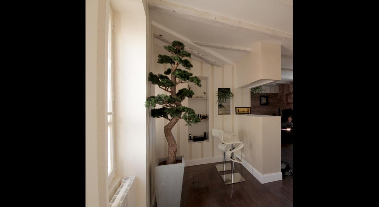Rénovation, appartement, Toulouse, centre historique, Atelier S, architecte, architecture intérieure, Toulouse, contemporain