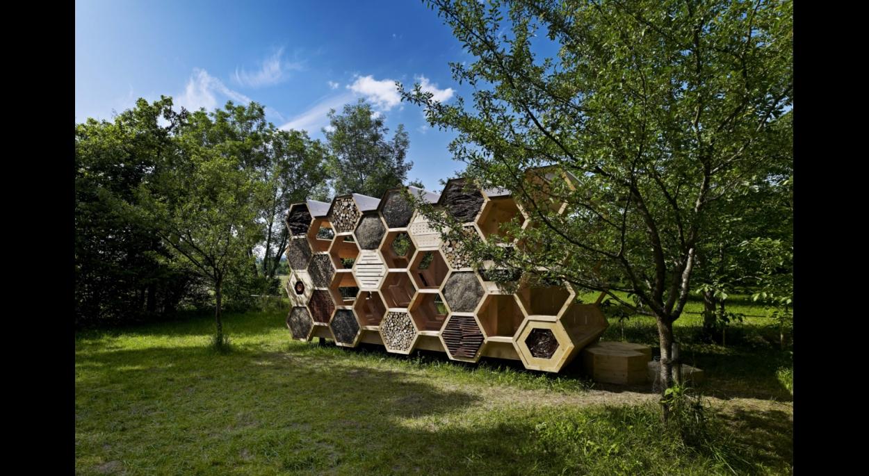 Construction d'une cabane (hôtel à insectes) dans le cadre du festival archi<20 à Muttersholtz