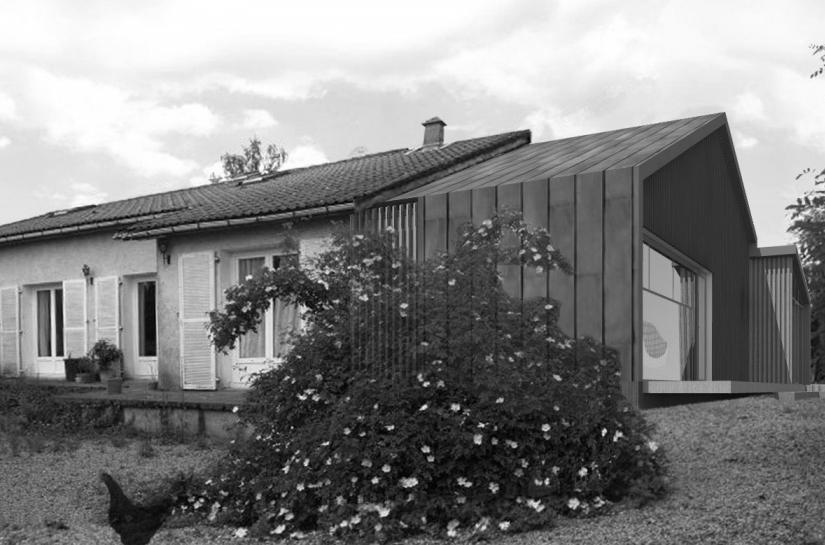 Extension maison de ville - bois et zinc