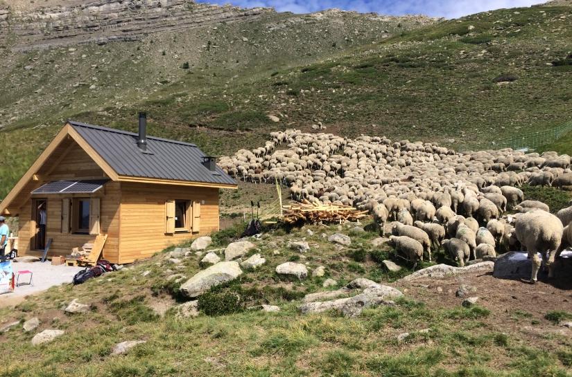 La nouvelle cabane pastorale