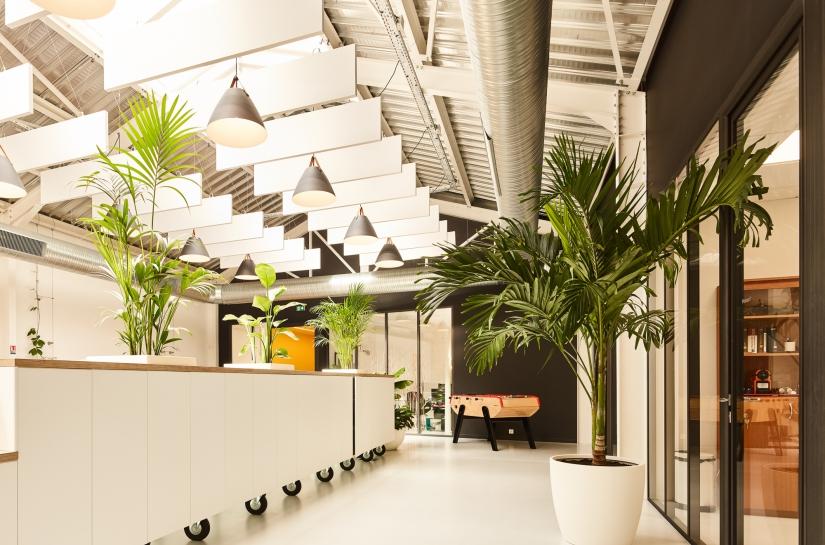 Open space avec de grands rangements et verrières vers des bureaux