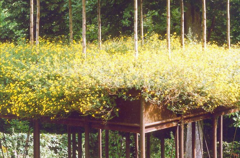 Babylones jardin suspendu festival des jardins de chaumont sur loire 1996 1997 benoit sejourne architecte